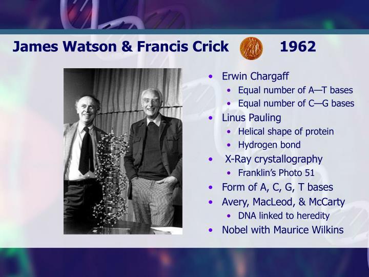 James Watson & Francis Crick            1962
