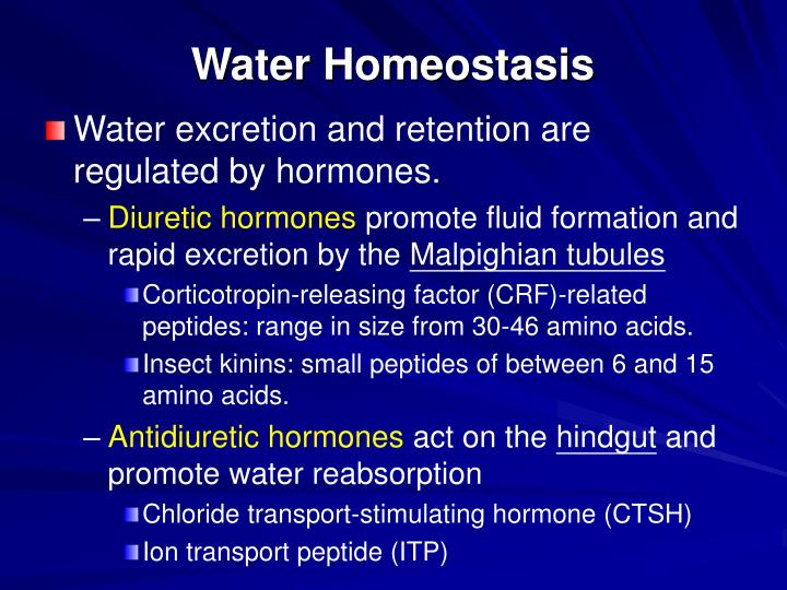 water homeostasis Posts about water homeostasis written by american physiological society.
