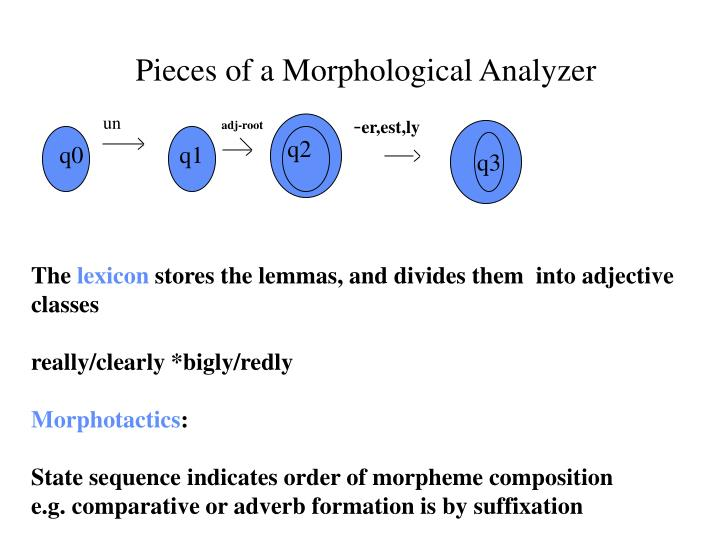 Pieces of a Morphological Analyzer