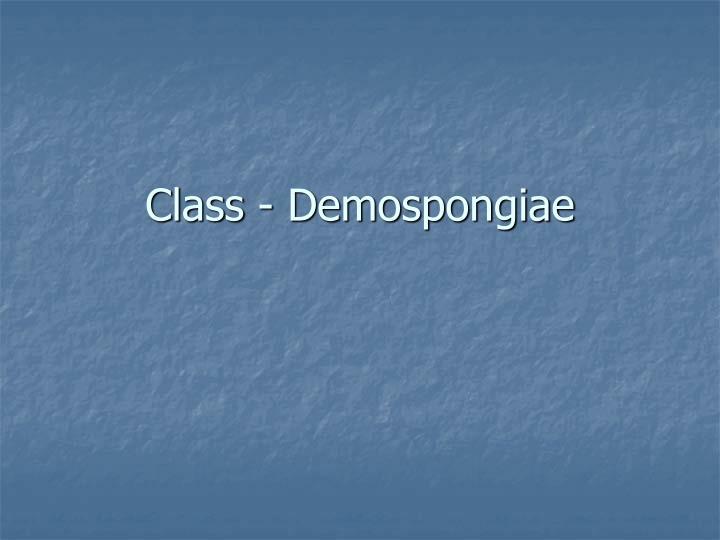 Class - Demospongiae