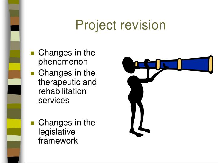 Project revision