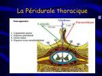 la p ridurale thoracique