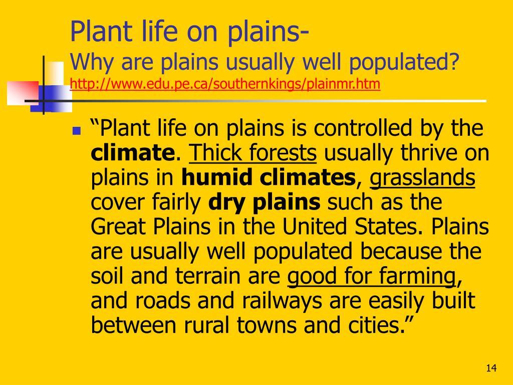 Plant life on plains-