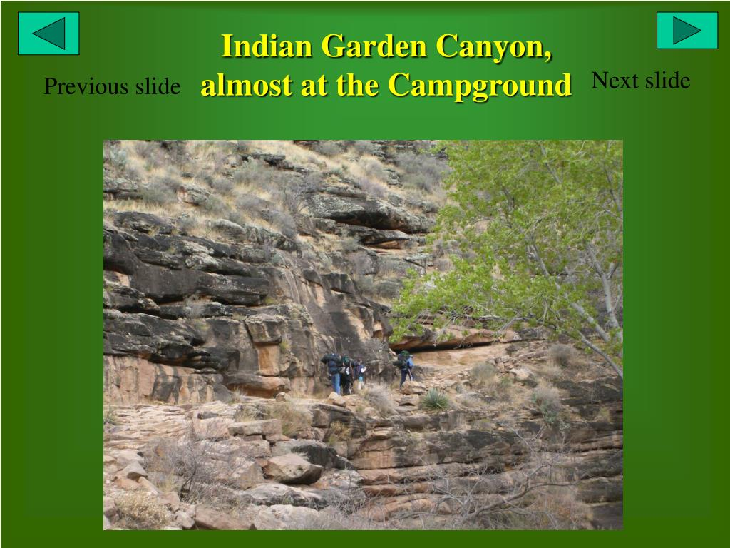Indian Garden Canyon, almost at the Campground