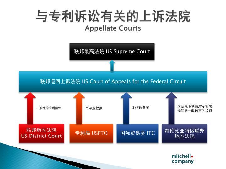 与专利诉讼有关的上诉法院