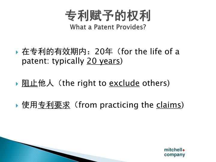 专利赋予的权利