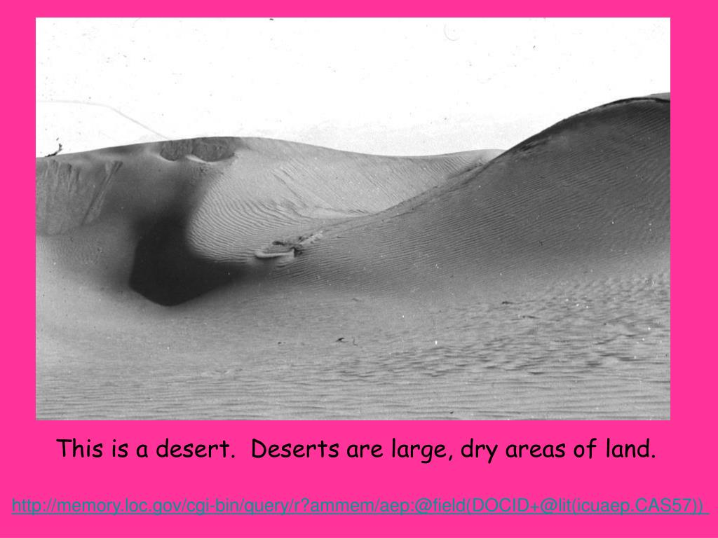 This is a desert.  Deserts are large, dry areas of land.