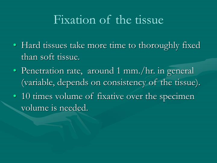 Fixation of the tissue