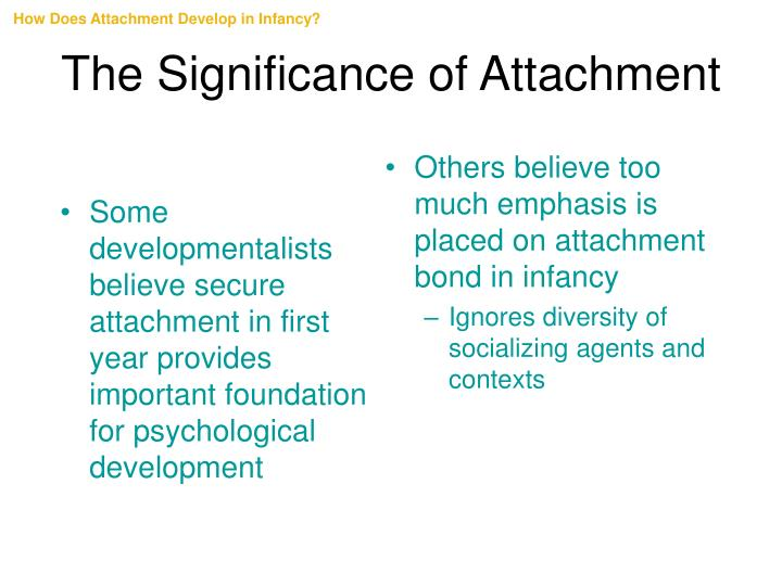 Some developmentalists believe secure attachment in first year provides important foundation for psychological development