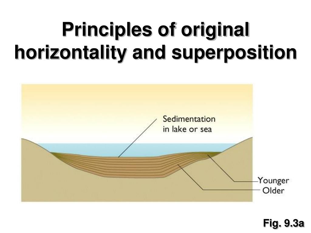 Principles of original horizontality and superposition