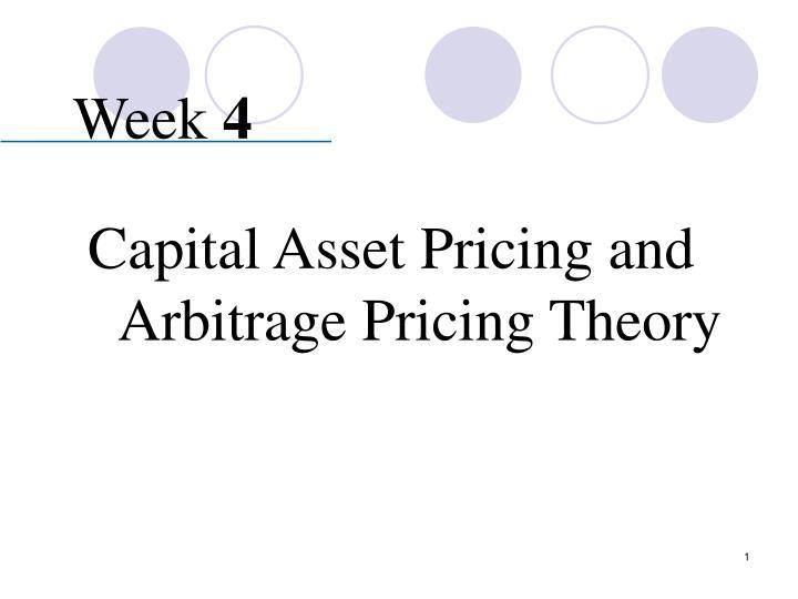 capital asset pricing model essay