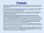 proiecte1