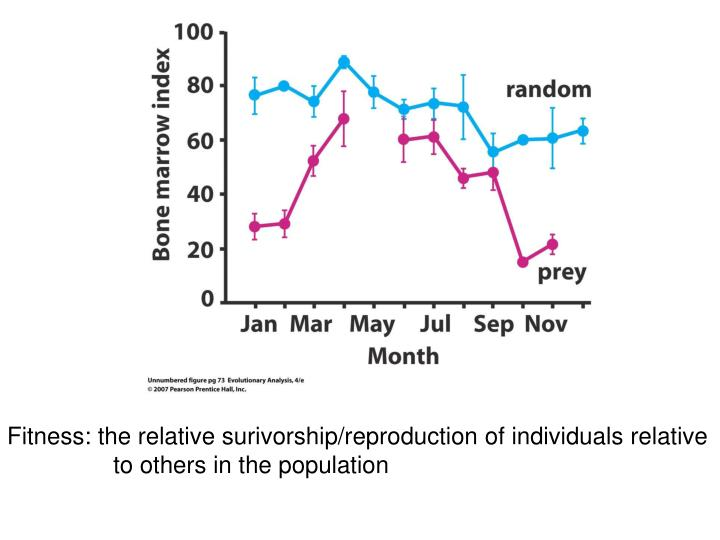 Fitness: the relative surivorship/reproduction of individuals relative