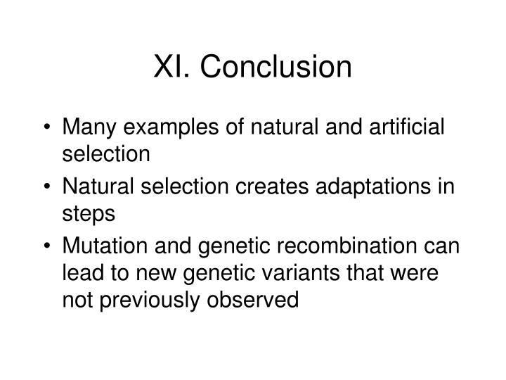 XI. Conclusion