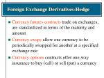 foreign exchange derivatives hedge31