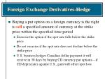 foreign exchange derivatives hedge33