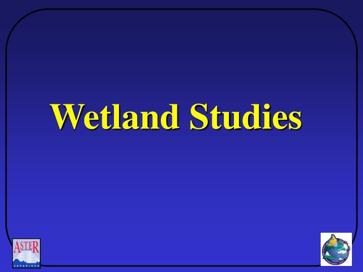 Wetland Studies