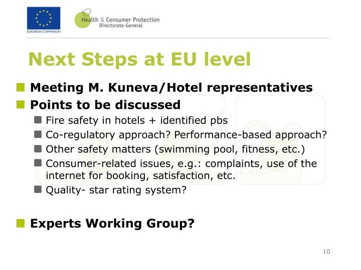 Next Steps at EU level