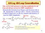 all leg all loop generalization