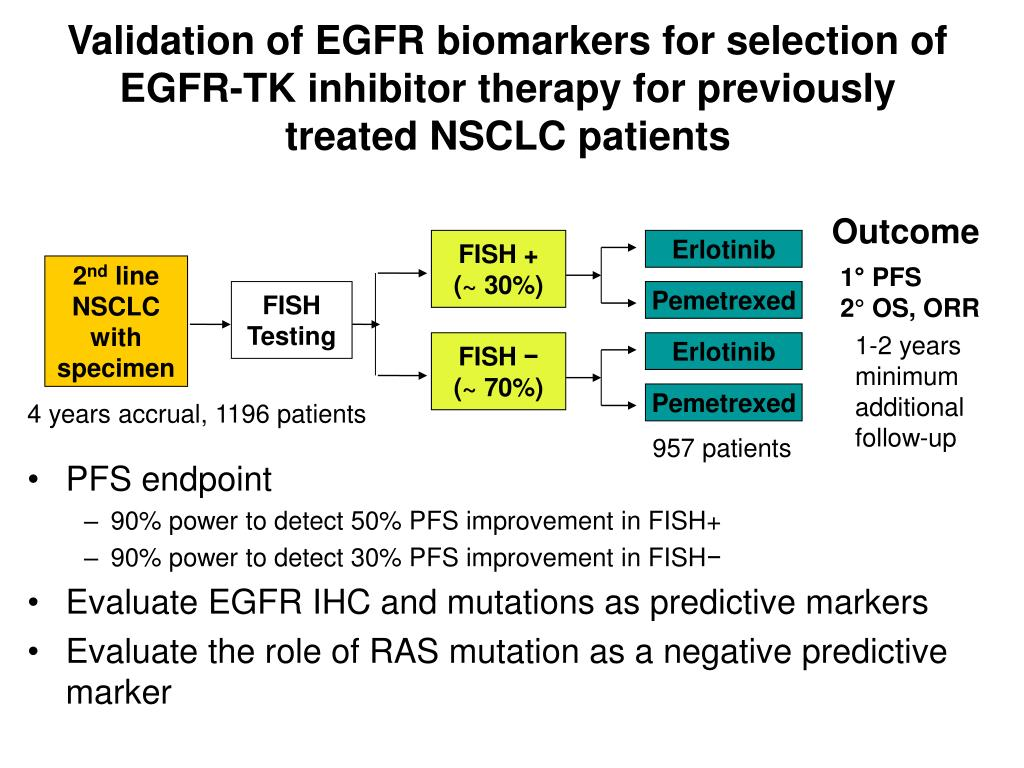 Validation of EGFR biomarkers for selection of EGFR-TK inhibitor therapy for previously treated NSCLC patients