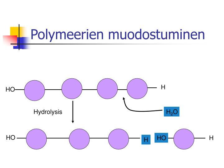 Polymeerien muodostuminen