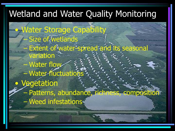 Wetland and Water Quality Monitoring
