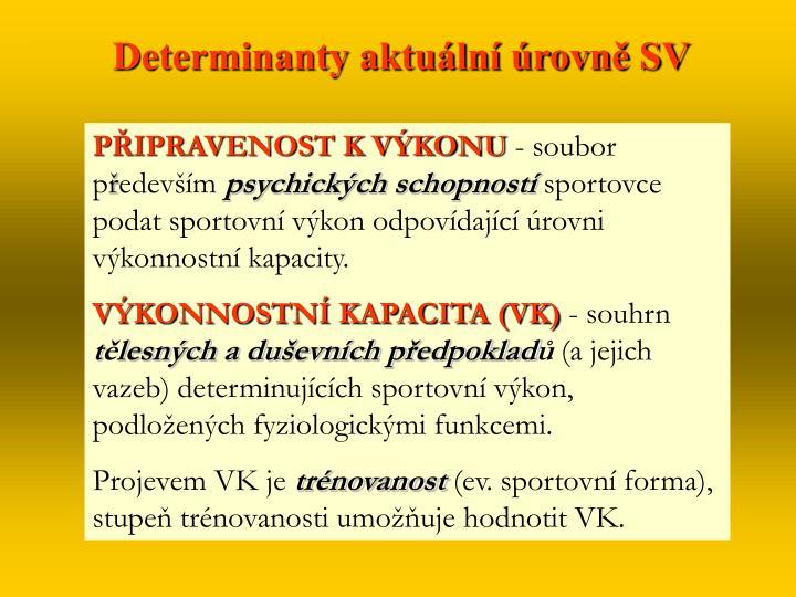 Determinanty aktuální úrovně SV