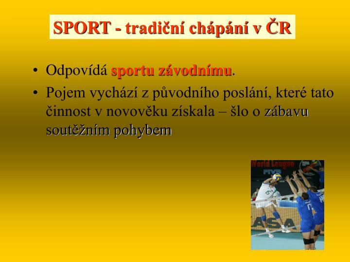 SPORT - tradiční chápání v ČR