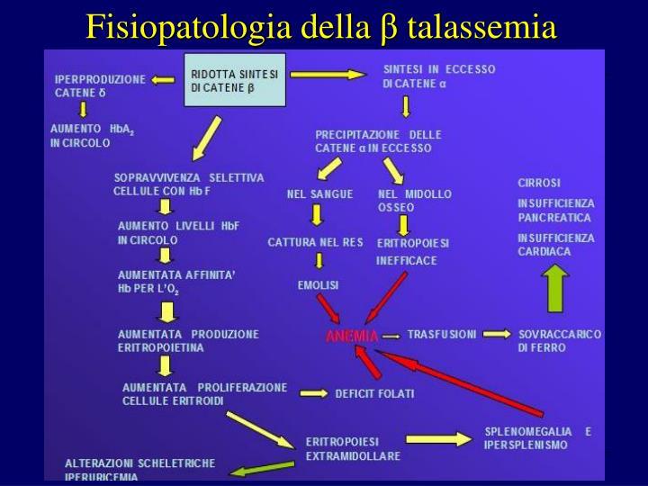 Fisiopatologia della
