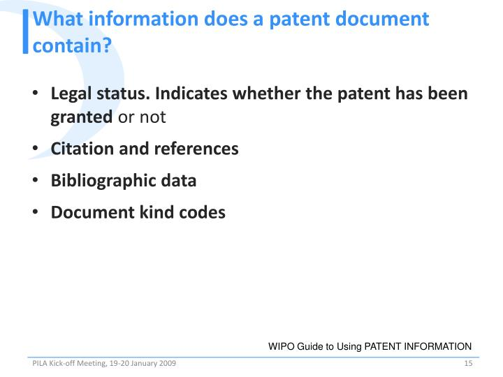 What information does a patent document