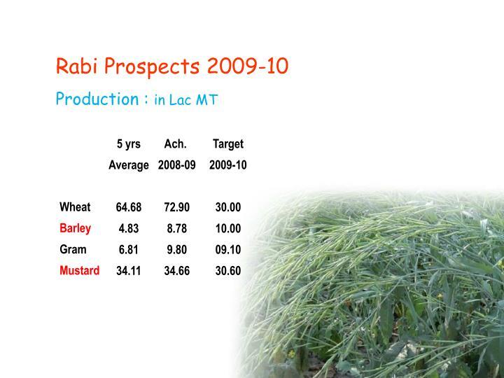 Rabi Prospects 2009-10