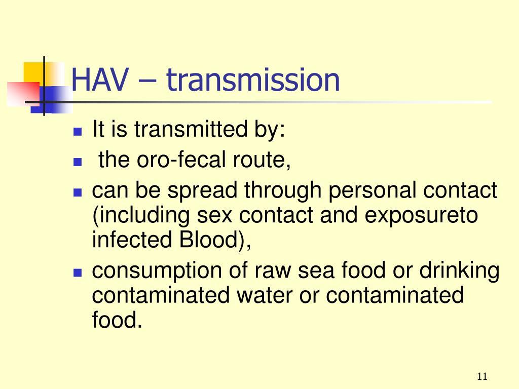 HAV – transmission