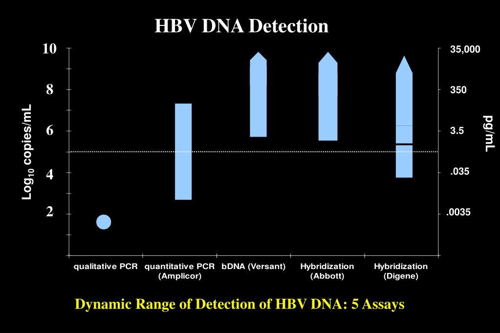 HBV DNA Detection
