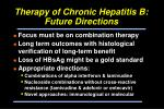 therapy of chronic hepatitis b future directions