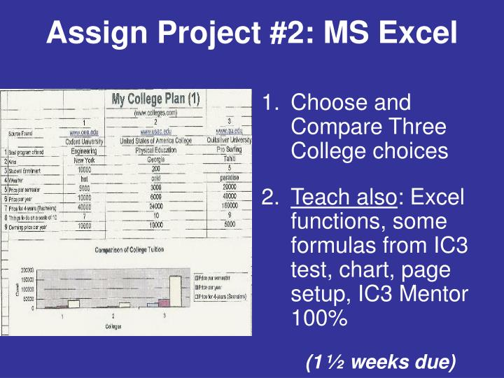 Assign Project #2: MS Excel