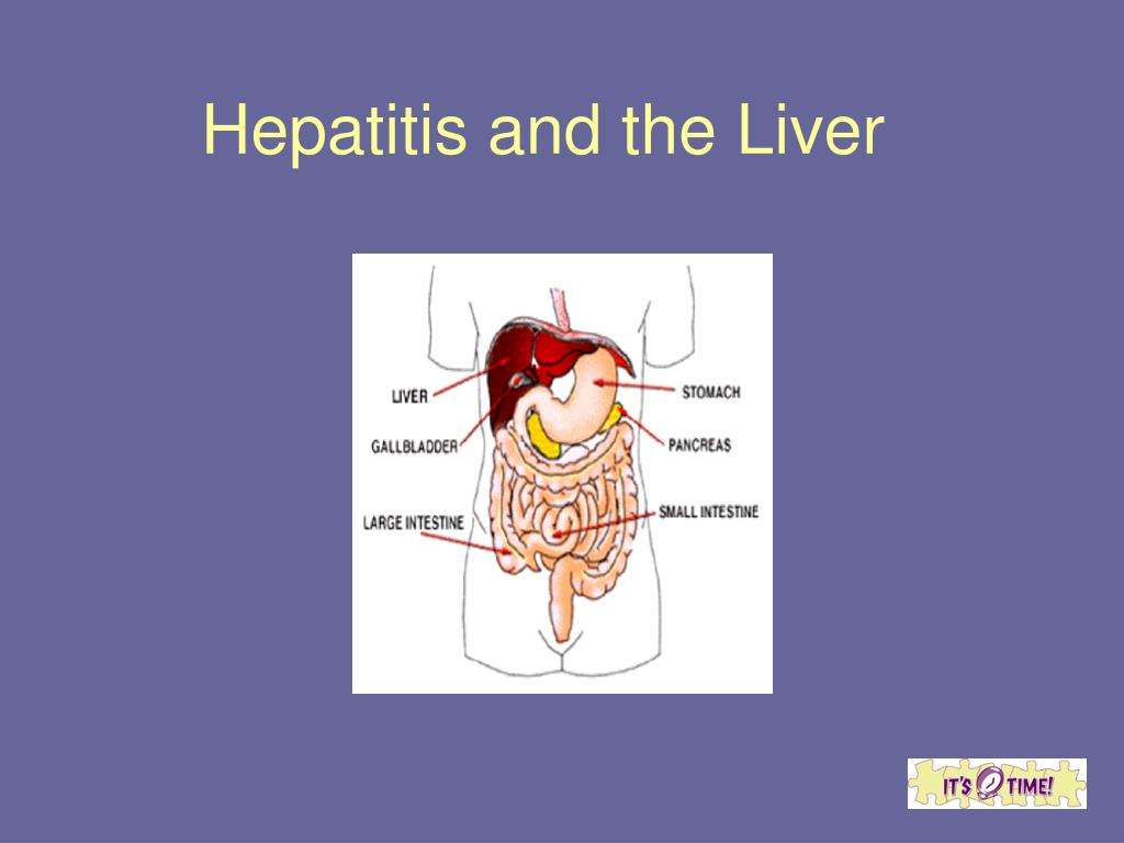 Hepatitis and the Liver