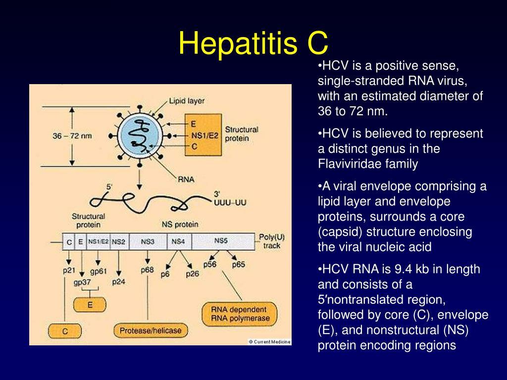 Hepatitis C