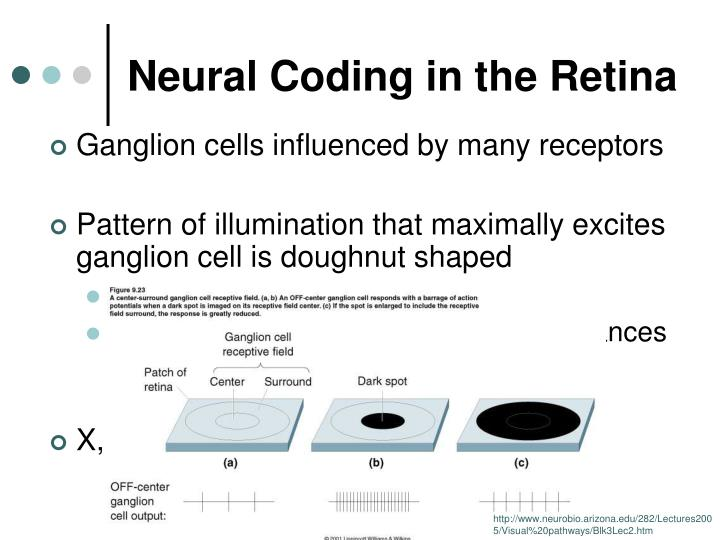 Neural Coding in the Retina