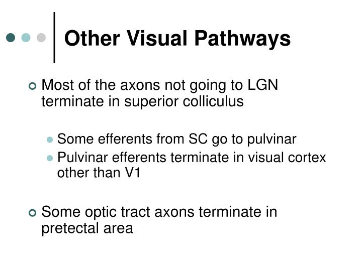 Other Visual Pathways