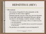 hepatitis e hev74