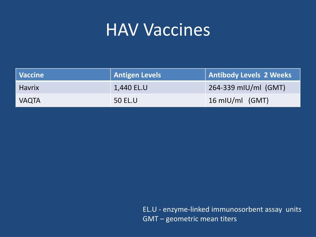 HAV Vaccines