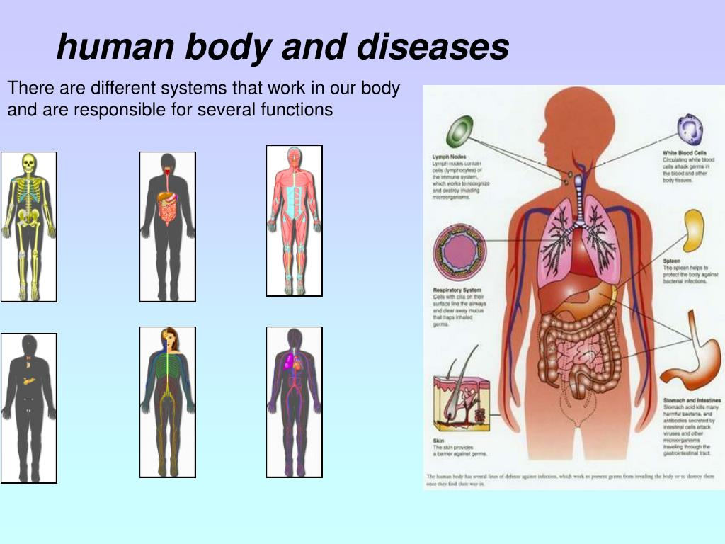 human body and diseases
