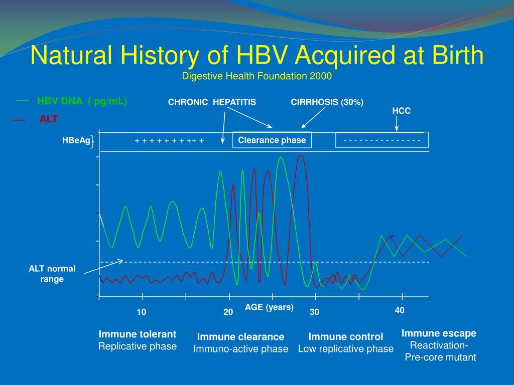 Natural History of HBV Acquired at Birth