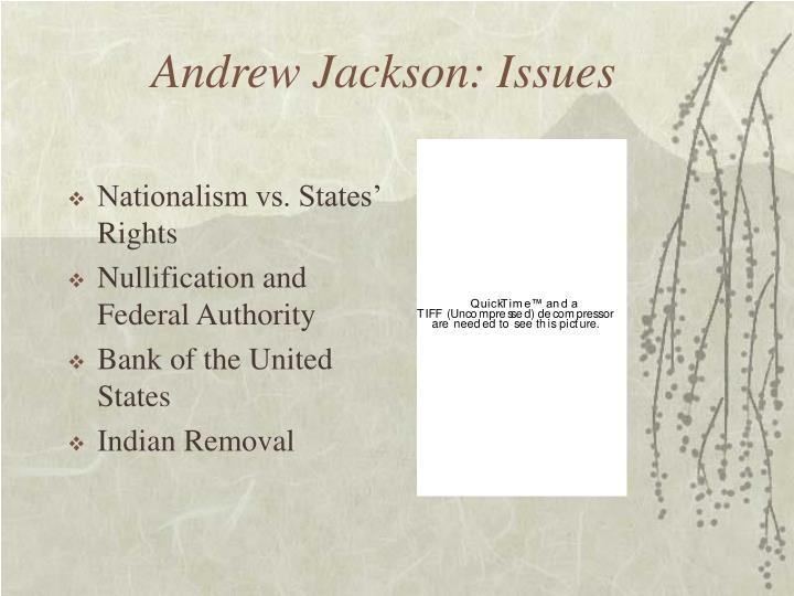 Andrew Jackson: Issues