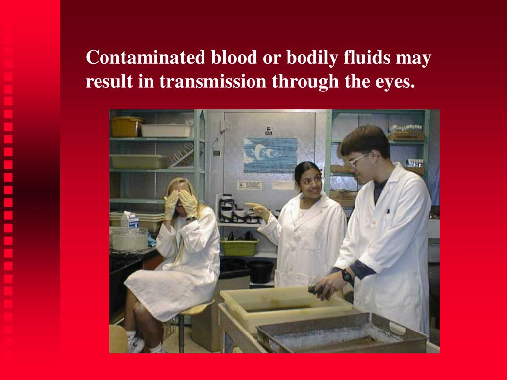 Contaminated blood or bodily fluids may      result in transmission through the eyes.