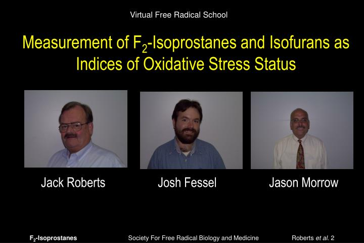 Virtual Free Radical School