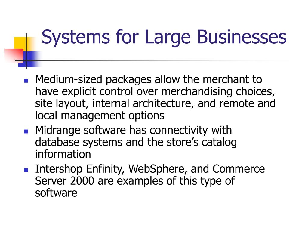 Systems for Large Businesses