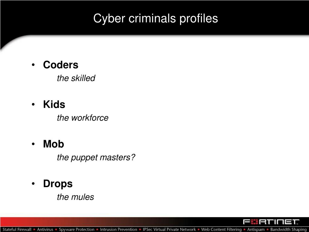 Cyber criminals profiles