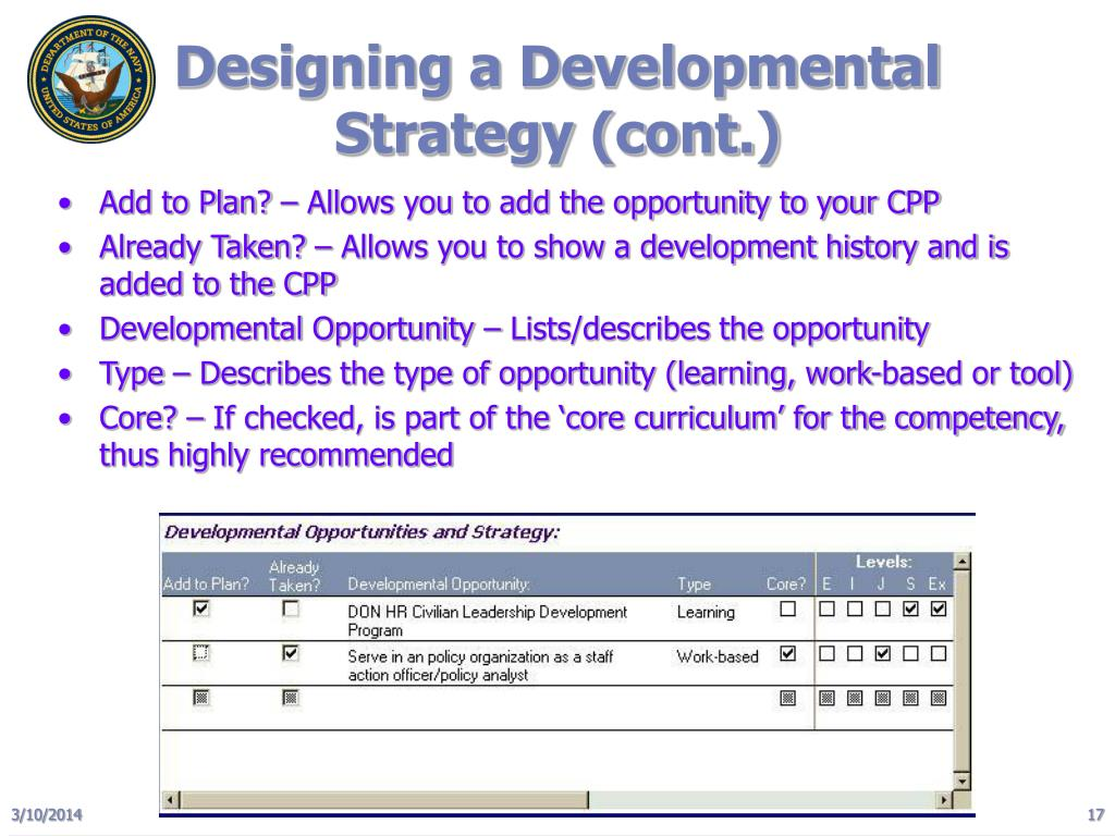 Designing a Developmental Strategy (cont.)