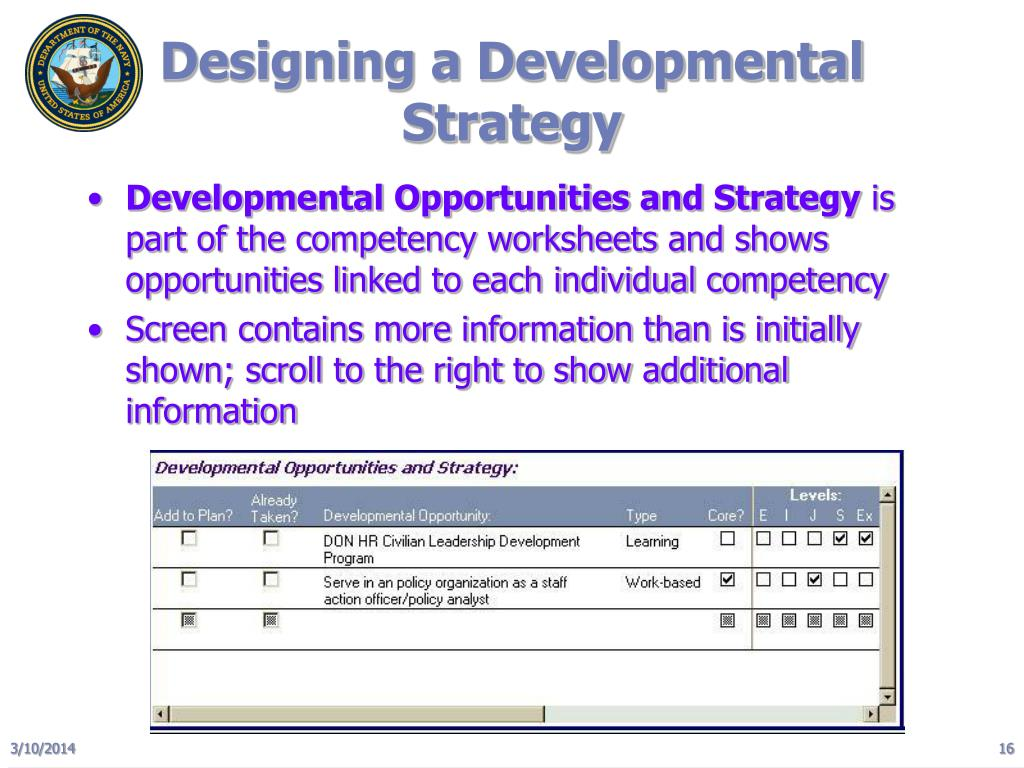 Designing a Developmental Strategy